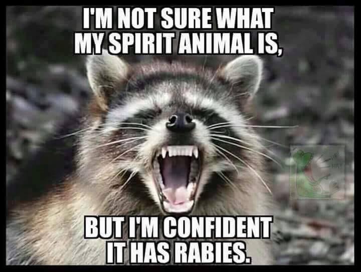 CLUB GIGGLE spirit-animal Spirit Animal is..... 3/18/17