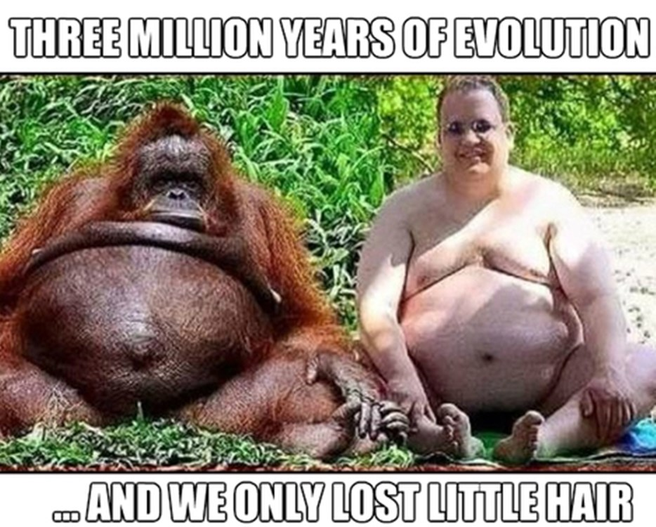 CLUB GIGGLE 3-million-evolution Three Million Years Of Evolution 4/13/2017