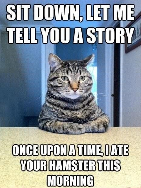 CLUB GIGGLE cat-telling-a-story Club Giggle's 10 Funny Animals Of The day 4/7/2017