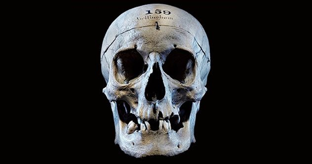 CLUB GIGGLE club-giggles-human-remains-you-can-visit-around-the-world-43017-3780 Human Remains You Can Visit Around The World
