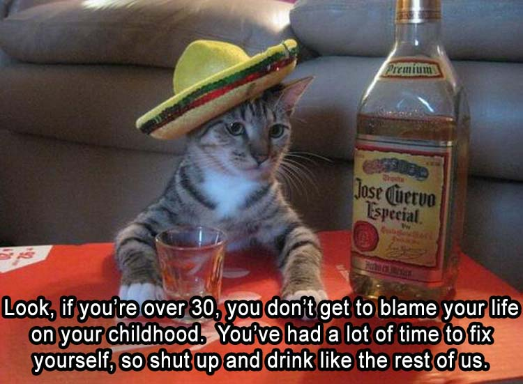 CLUB GIGGLE drunk-cat Club Giggle's 10 Funny Pictures Of the Day 4/8/2017