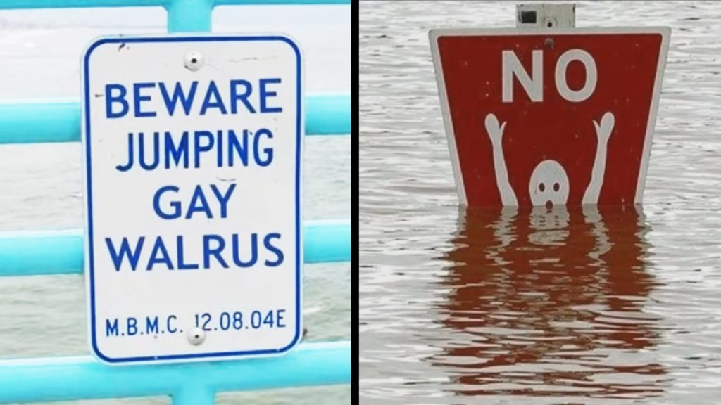 CLUB GIGGLE gay-walrus 21 Funny Signs From Around The World