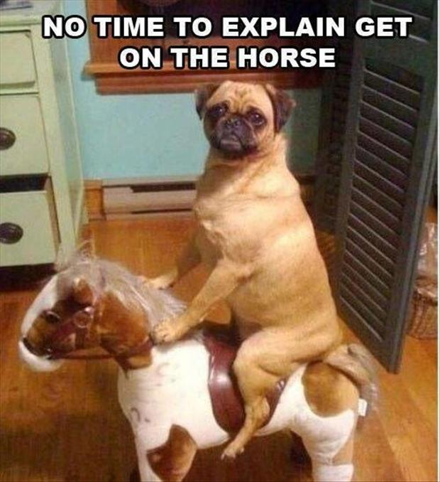 CLUB GIGGLE oh-you-hme-early Club Giggles Top 10 Funny Pictures 4/6/2017
