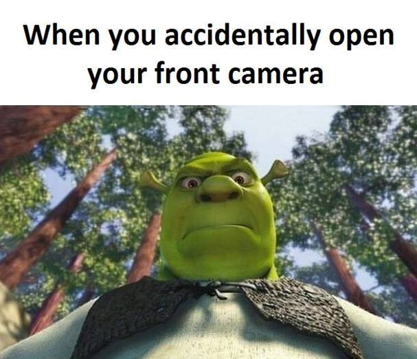 CLUB GIGGLE shrek Club Giggle's 10 Funny Pictures OF The Day 4/11/2017