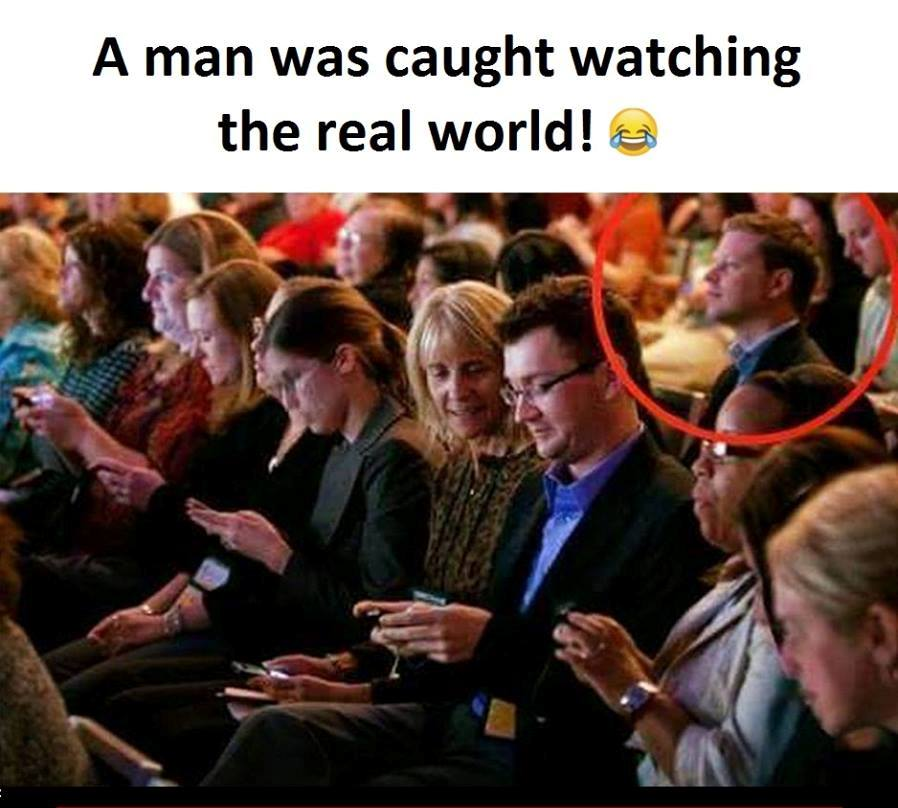 CLUB GIGGLE watching-the-real-world 10 Funny Pictures of the day 4/24/2017