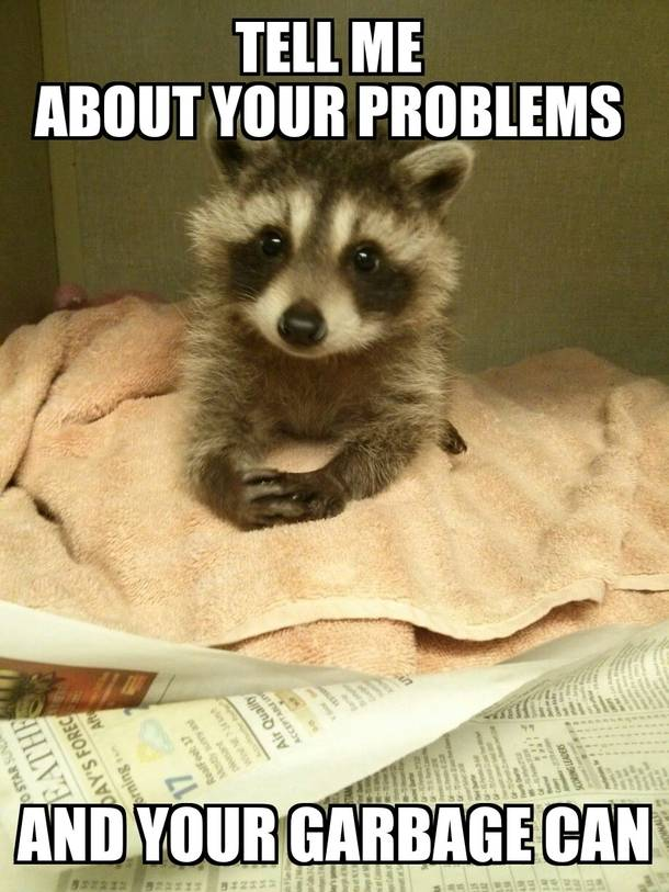 CLUB GIGGLE 24-funny-animals-pictures-of-the-day-552017-4147 Club Giggle Brings You 24 Funny Animals Pictures Of The Day5/5/2017