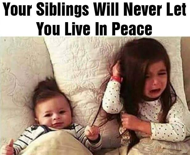 CLUB GIGGLE 393 25 Funny Pictures Of The Day5/17/2017