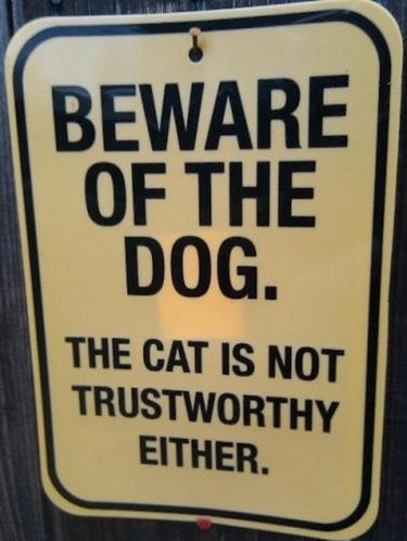 CLUB GIGGLE wtf-warning-sign-cat-trustworthy Club Giggle's 24 Funny Signs  5/6/2017