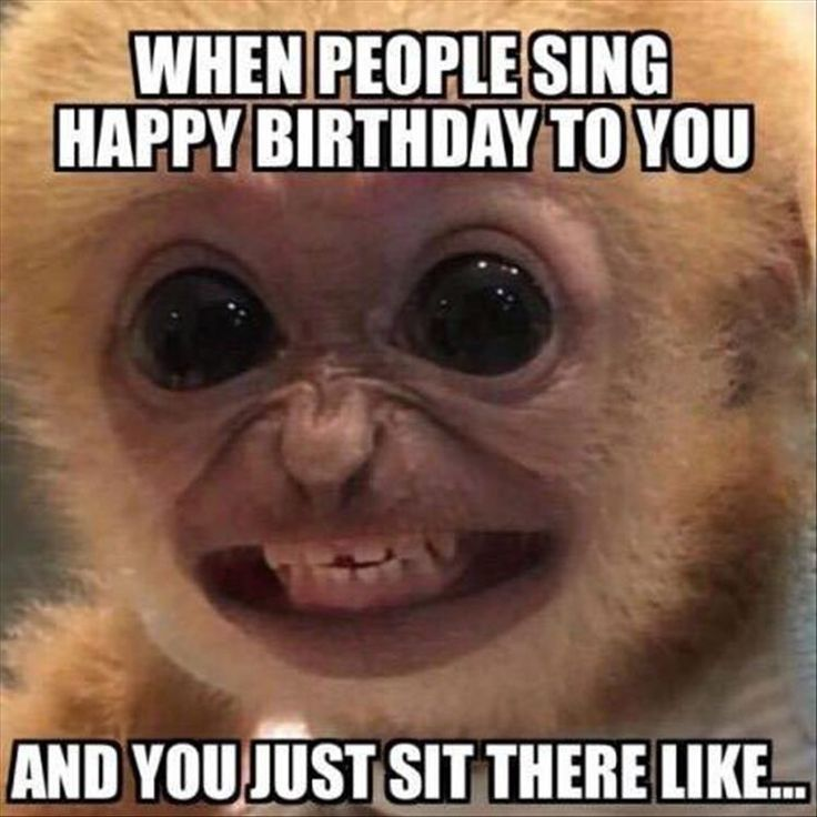 CLUB GIGGLE 1403 Club Giggle's 24 Funny Pictures Of The Day 6/18/2017