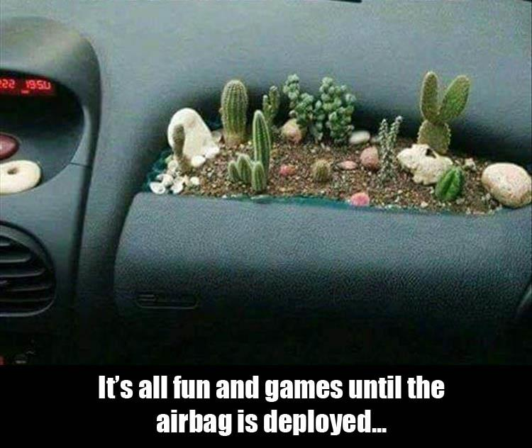 CLUB GIGGLE 320 Club Giggle's 20 Funny Pictures Of The Day 6/11/2017