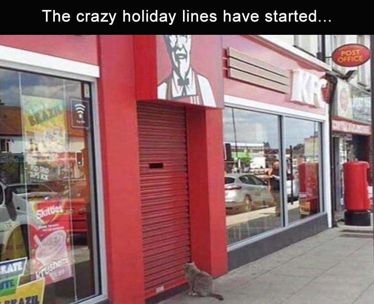 CLUB GIGGLE the-holiday-lines-are-getting-crazy Club Giggle's Funny Pictures Of The Day