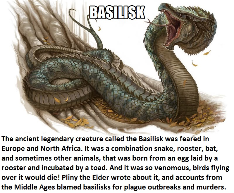 CLUB GIGGLE basilik Club Giggle's 16 most disturbing mythical creatures from around the world