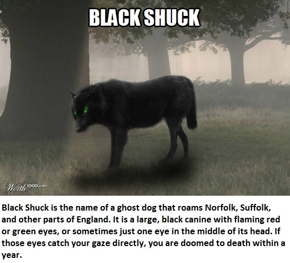 CLUB GIGGLE black-shuck Club Giggle's 16 most disturbing mythical creatures from around the world