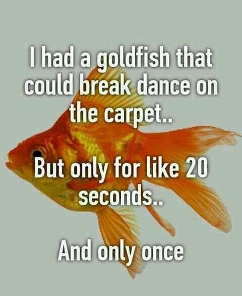 CLUB GIGGLE club-giggles-saturday-madness-memes-with-50-more-funny-11764 Club Giggle's Saturday Madness Memes With 50% More Funny