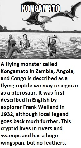 CLUB GIGGLE kongamato Club Giggle's 16 most disturbing mythical creatures from around the world
