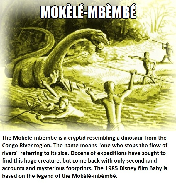 CLUB GIGGLE mokele Club Giggle's 16 most disturbing mythical creatures from around the world