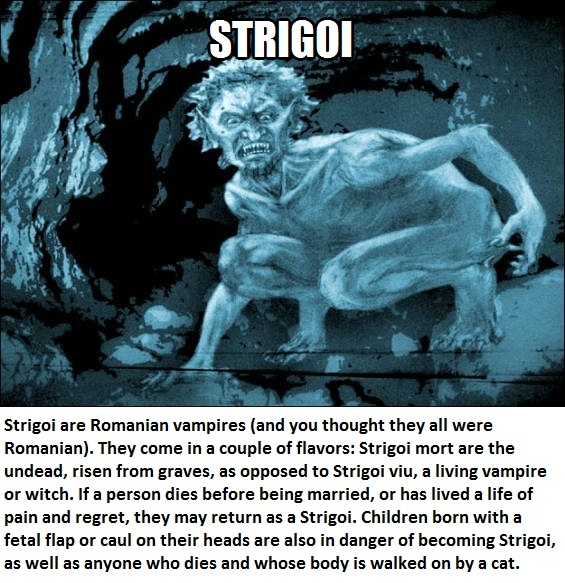 CLUB GIGGLE strigoi Club Giggle's 16 most disturbing mythical creatures from around the world