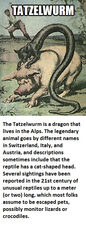 CLUB GIGGLE tatazelwurm Club Giggle's 16 most disturbing mythical creatures from around the world