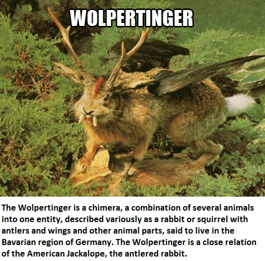 CLUB GIGGLE wolperinger Club Giggle's 16 most disturbing mythical creatures from around the world
