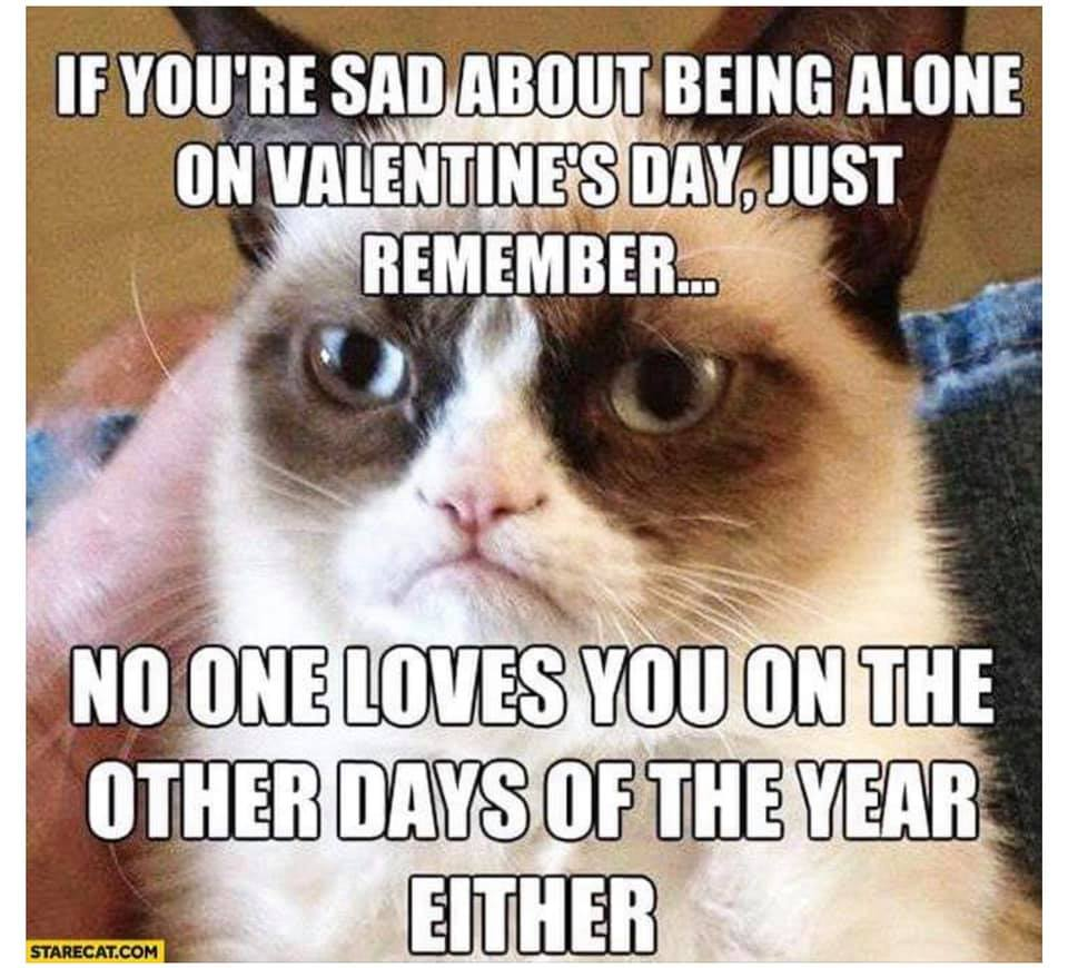 CLUB GIGGLE club-giggles-valentine-day-memes-to-laugh-at-13720 Club Giggle's Valentine Day Memes To Laugh At.......Club Giggle's Valentine Day Memes To Laugh At.......because love hurts