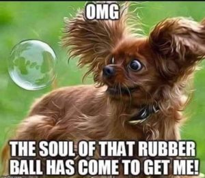 CLUB GIGGLE club-giggles-saturday-funny-meme-blow-out-sale-18564 Club Giggle's Saturday Funny Meme Blow Out Sale