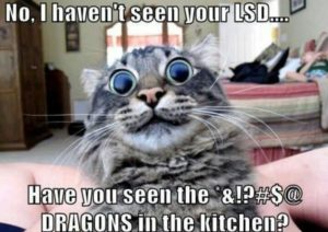 CLUB GIGGLE 1098-300x212 Club Giggle's 20 Wednesday Afternoon Memes For A Laugh With Your Coffee