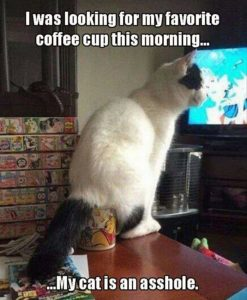 CLUB GIGGLE 1102-247x300 Club Giggle's 20 Wednesday Afternoon Memes For A Laugh With Your Coffee