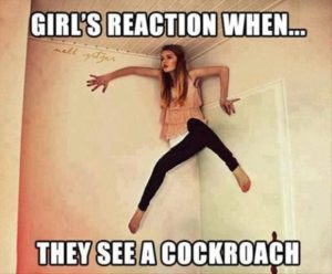 CLUB GIGGLE 1103-300x248 Club Giggle's 20 Wednesday Afternoon Memes For A Laugh With Your Coffee