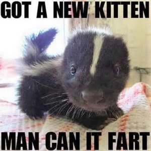 CLUB GIGGLE 2230-300x300 Club Giggle's 25 Tuesday Afternoon Memes For A Laugh With Your Coffee