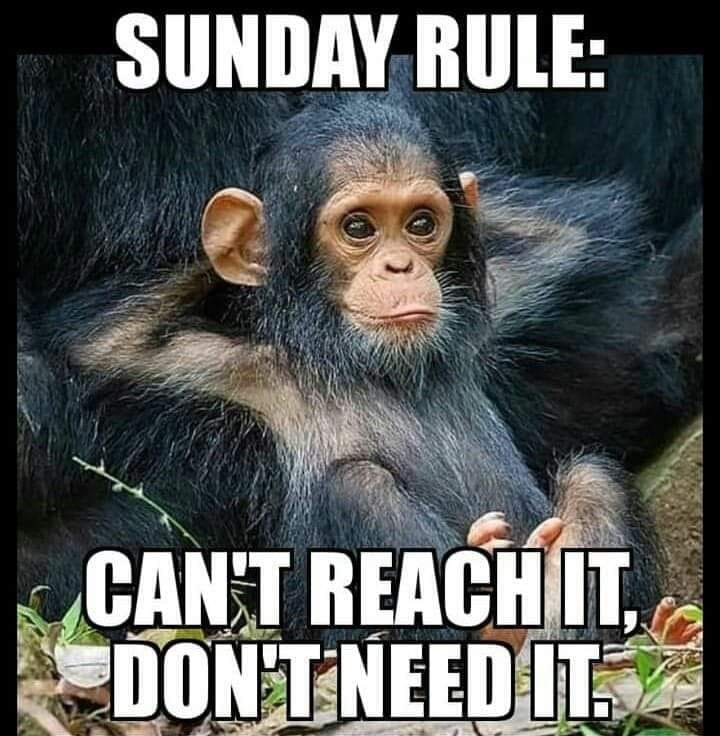 CLUB GIGGLE 80406180_2427066847546157_6613874075309703168_n Club Giggle's Sunday Memes While You Wait For The Holidays To Be Over.