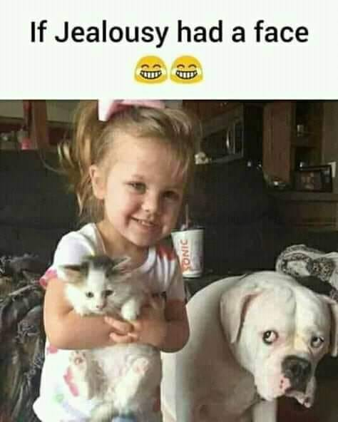 CLUB GIGGLE club-giggles-wicked-funny-memes-for-a-monday-morning-laugh-18811 Club Giggle's Wicked Funny Memes For A Monday Morning Laugh