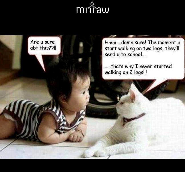 CLUB GIGGLE 787 Saturday Funny Memes 31 pics Dump