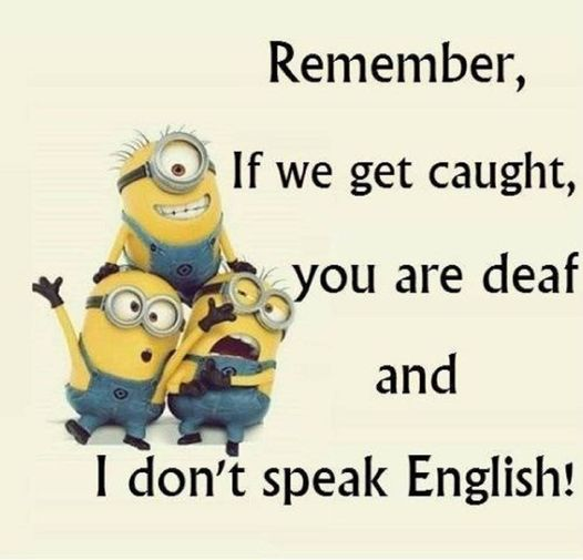 CLUB GIGGLE funny16-1 33 Funny Pictures of the Day