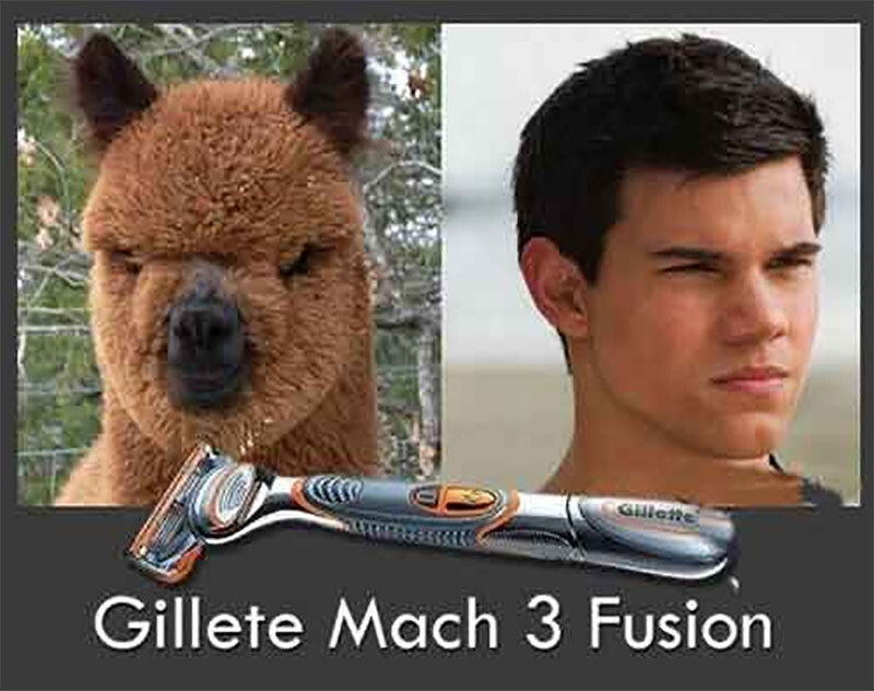 CLUB GIGGLE Gillet-Mach-3-Fusion-Funny-Razor-Picture When Before And After Go Horribly Wrong 25 Pics