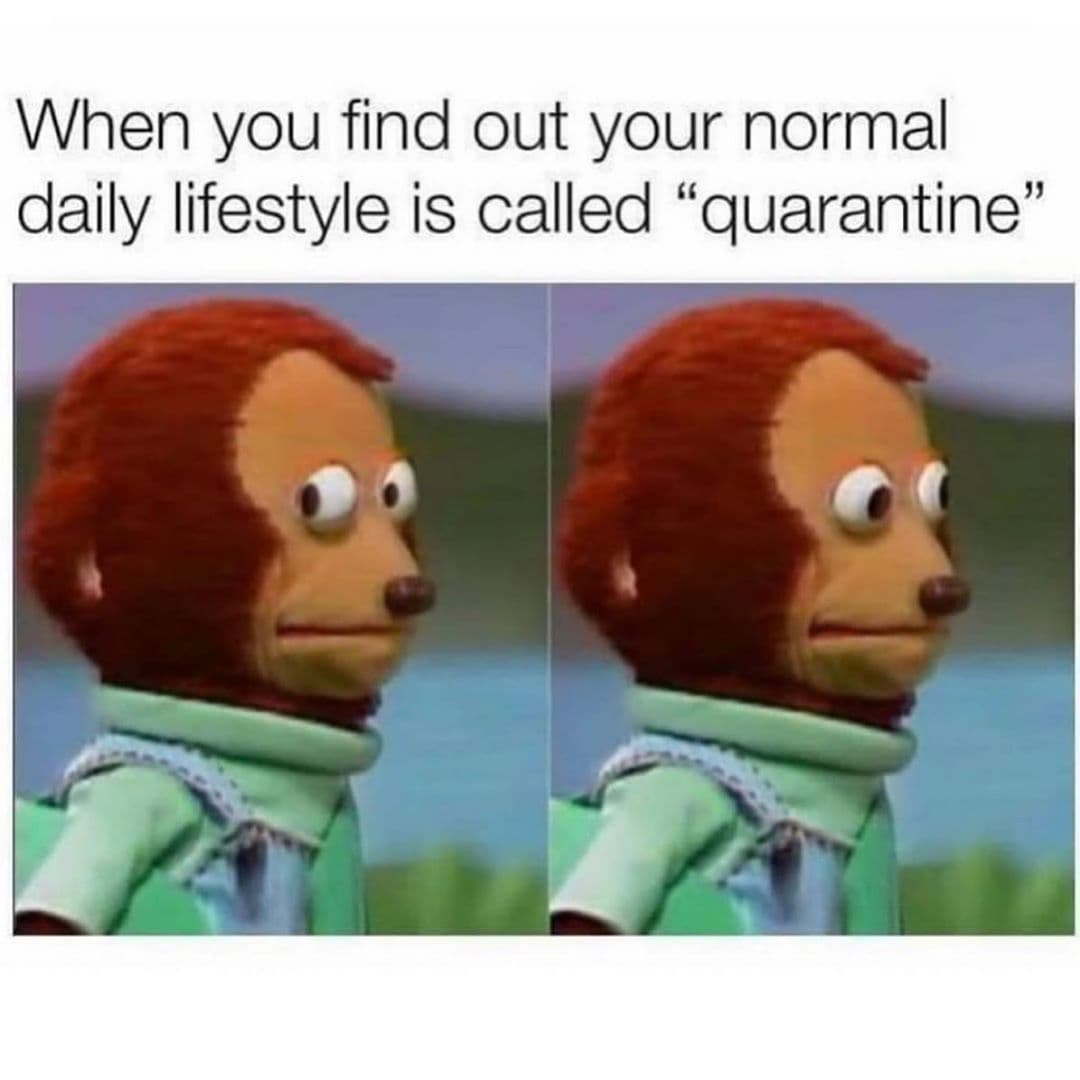 CLUB GIGGLE daily-lifestyle 31 Funny Quarantine Memes to Reduce Your Boredom...
