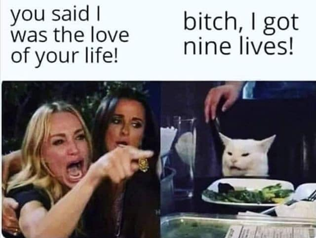 CLUB GIGGLE got-nine-lives 28 Funny Memes From The Dark Side....