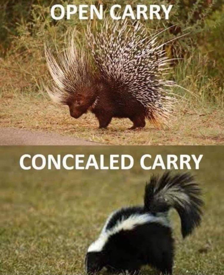 CLUB GIGGLE open-and-conceeled-carry 29 Covid Free Funny Memes....
