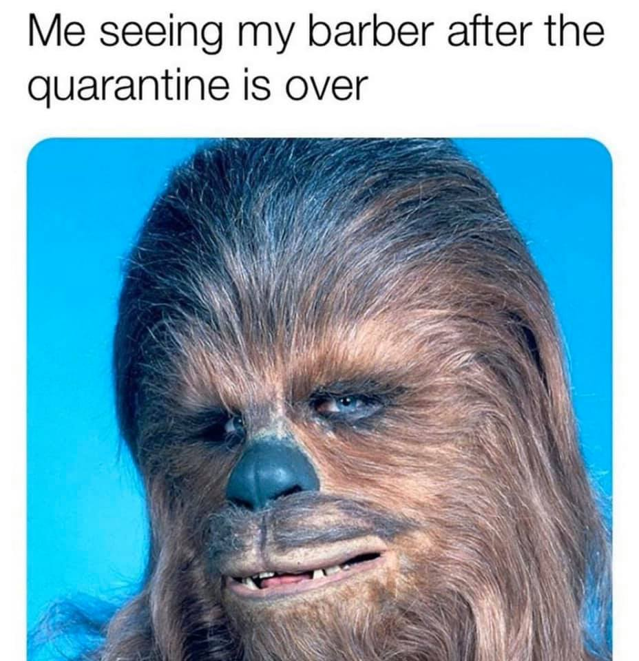 CLUB GIGGLE seeing-my-barbour-after-the-quarentine 31 Funny Quarantine Memes to Reduce Your Boredom...