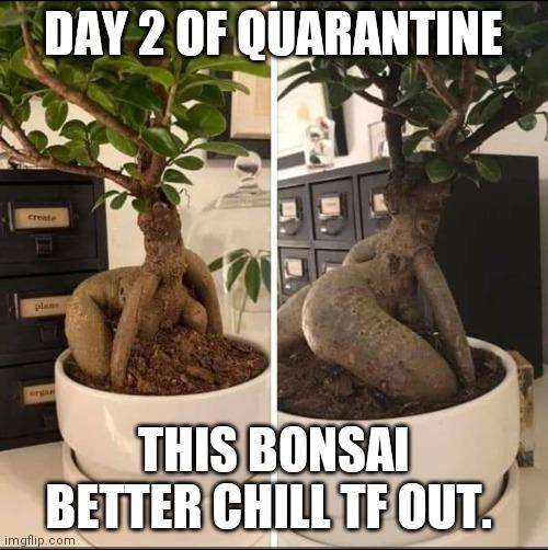 CLUB GIGGLE sexy-bosai 31 Funny Quarantine Memes to Reduce Your Boredom...