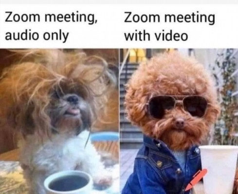 CLUB GIGGLE zoom-meeting 31 Funny Quarantine Memes to Reduce Your Boredom...