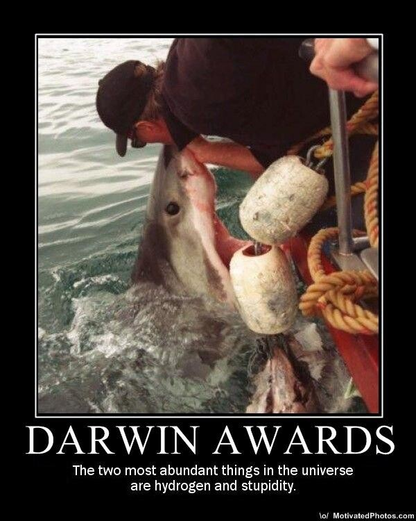 "CLUB GIGGLE 6e0 Top Answer Still On The Board... Show Us ""Darwin Awards!""30 Pics"