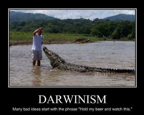 "CLUB GIGGLE darwin-award-winner Top Answer Still On The Board... Show Us ""Darwin Awards!""30 Pics"