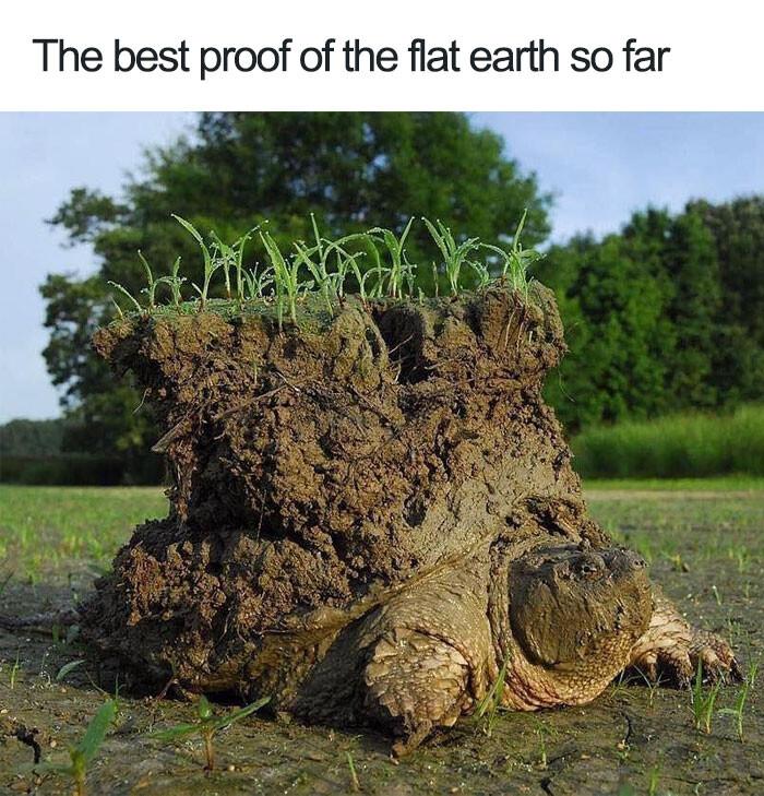 CLUB GIGGLE flat-earth-meme12 29 Hilarious Flat Earth Meme On The Internet...