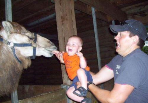 CLUB GIGGLE parenting-fails5 25 Horrific Parenting Fails.....