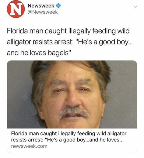 CLUB GIGGLE 2 FLORIDA MAN IN HEADLINES 25 TIMES AGAIN.. RUNNING AMOK AS ONLY HE CAN.......