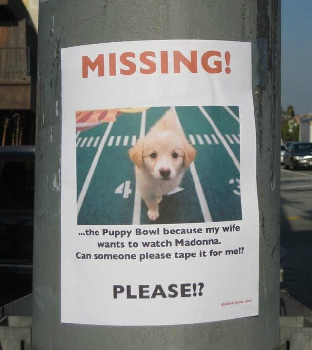 CLUB GIGGLE Missing-the-Puppy-Bowl 25 Hilarious Lost And Found Signs