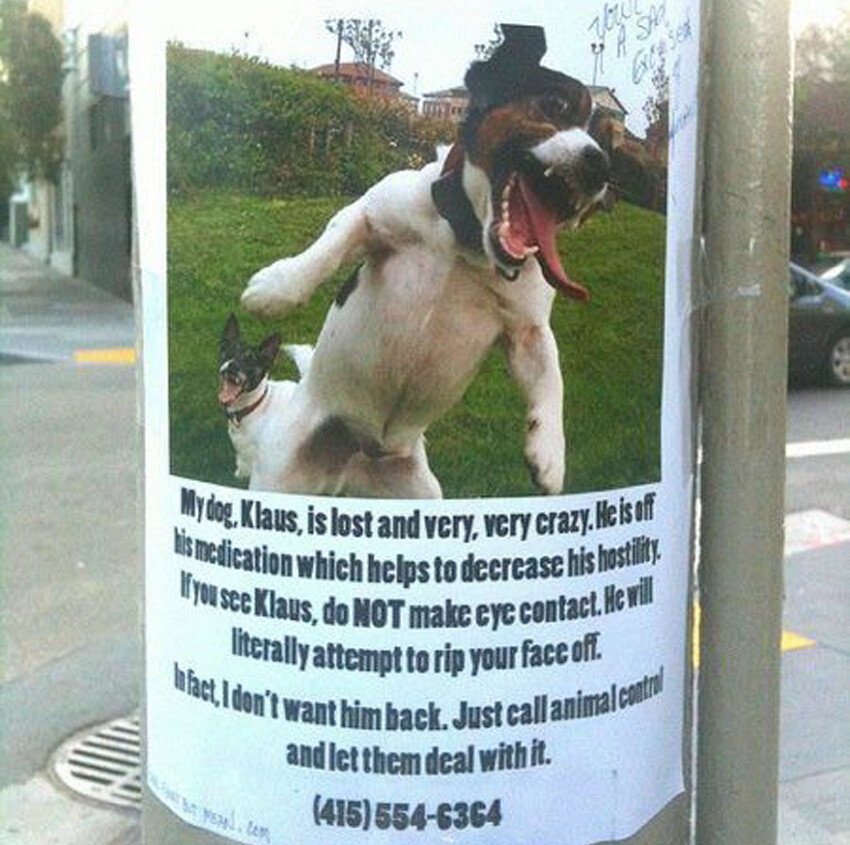 CLUB GIGGLE lost-and-found5 25 Hilarious Lost And Found Signs
