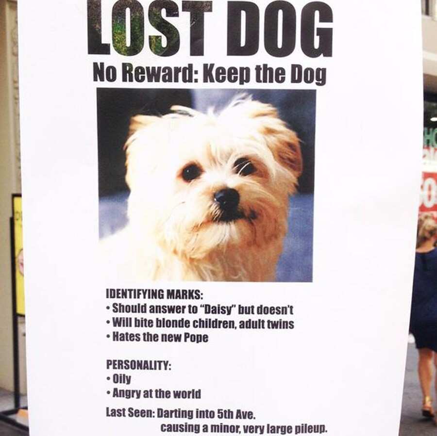 CLUB GIGGLE lost-and-found7 25 Hilarious Lost And Found Signs