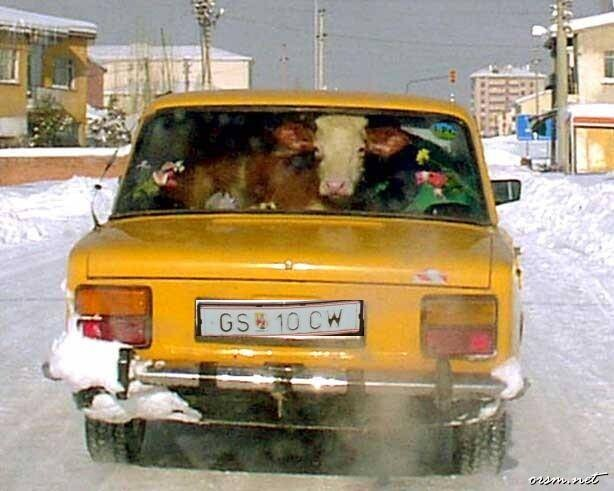 CLUB GIGGLE 1962-vehicles Meanwhile in Mother Russia 47 Pics...