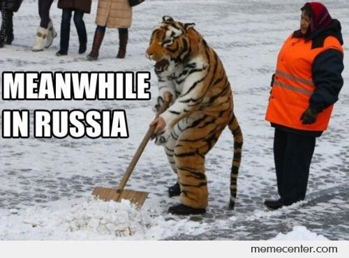 CLUB GIGGLE Meanwhile-in-Russia-Tigers-have-developed-hands_o_76928 Meanwhile in Mother Russia 47 Pics...